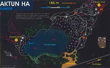 Diving in Cenote Aktun Ha