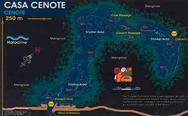Diving in Cenote Casa Cenote