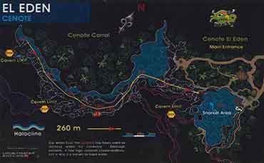 Diving in Cenote El Eden